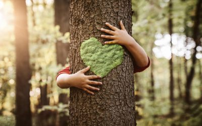 Coupa Sustainability: Taking Action to  Combat Climate Change